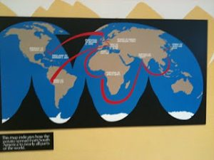 A map of the potato migration paths across the globe.