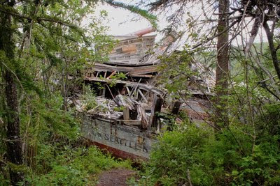 Old broken down paddlewheeler surrounded by trees