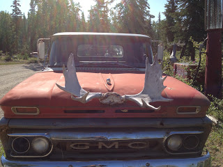 Moose antlers attached to the front of an old orange GMC truck