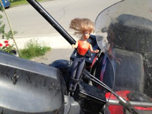Barbie dodges dragonflies on the way to Whitehorse