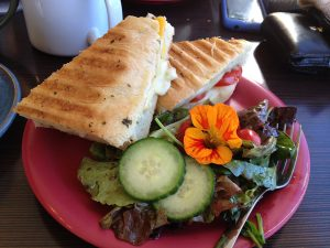 A beautiful plate of a grilled sandwich, a fresh green salad, and a bright orange flower for a garnish