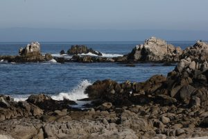 Image of the rocky shores of the beach