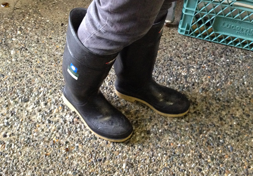 Image of Judy's legs with her feet in rubber boots