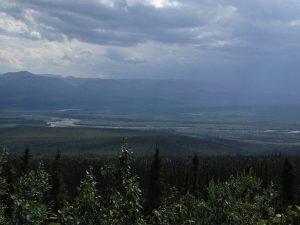 Image of Wetlands