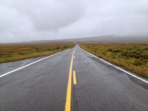 Image of the paved Denali highway