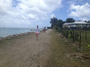 Image of everyone walking along a beach trail