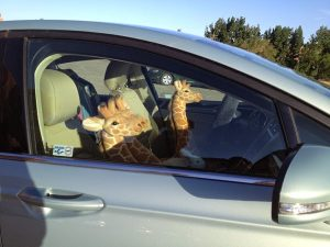 Image of a parked car with several stuffed giraffes in the front seats