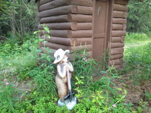 Image of a bear figurine outside of an outhouse