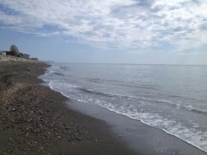 Image of a beach with black sand