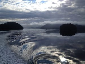Image of the water in the Sitka sound during a wave with an additional reflection