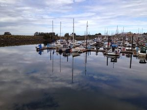 Image of many boats in the water in a dock