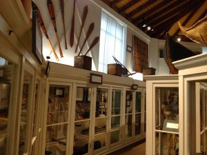 Image of collection cases in a museum surrounded by wooden oars