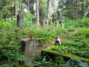 Image of a bright green forest with scattered gravestones almost unnoticeable due to overgrowth