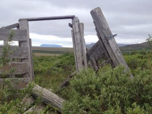 Image of an Abandoned reindeer herding corral.